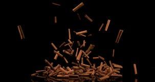 Varas de canela, zeylanicum da canela, especiaria que cai contra o fundo preto, movimento lento video estoque