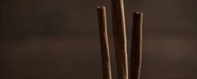 Varas de Cinamon Fotografia de Stock Royalty Free