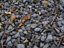 Varas e pedra Imagens de Stock Royalty Free