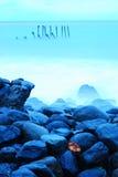 Varas e pedras Fotografia de Stock