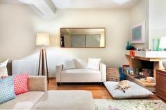 Vardagsrum med spisen och en hund på en kudde arkivfoto