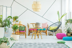 Vardagsrum med växter och puffar arkivfoton