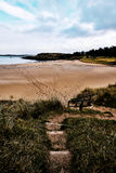 Vare en Adds Forest Park con los rastros en la arena que lleva al océano Imagen de archivo