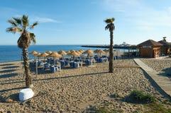 Vare la barra en Marbella con palmtrees y hamacas Imágenes de archivo libres de regalías