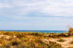 Vare las dunas en el sol, escena de la playa con el espacio de la copia, dunas de arena Imagen de archivo libre de regalías