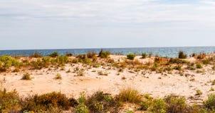 Vare las dunas en el sol, escena de la playa con el espacio de la copia, dunas de arena Fotos de archivo
