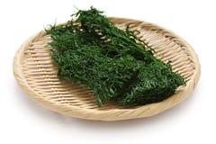 Varec verde secado, aonori, alimento japonés fotos de archivo