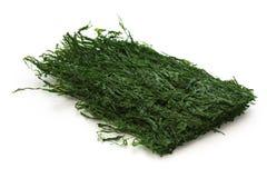 Varec verde secado, aonori, alimento japonés Fotos de archivo libres de regalías