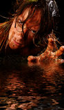 varelseswamp Royaltyfria Foton