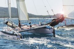 Varend bootras, catamaran in regatta Royalty-vrije Stock Fotografie