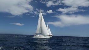 Varend jachtras Rijen van luxejachten bij jachthavendok Boten in het varen regatta Varende schipjachten met witte zeilen stock footage