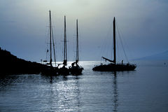 Varende boten in het maanlicht Stock Afbeelding
