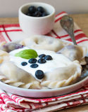 Vareniki. Dumplings with blueberries. Served with sour cream. Dish of Russian and Ukrainian cuisine Royalty Free Stock Photo