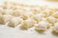 Vareniki klimpar med potatisar på vit bakgrund - traditi Arkivfoton