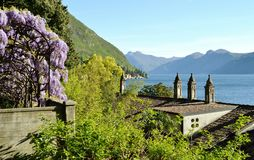 Varenna Monastero park lilac flowers and lake Como in spring. Royalty Free Stock Photos