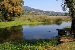 Varese jezioro Obraz Royalty Free