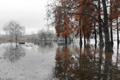 Varese Lake, overflow in the public park Zanzi Stock Photo