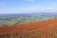 Varför rött berg? royaltyfria foton