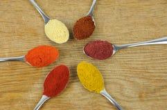 Variété d'épices sur des cuillères Photographie stock