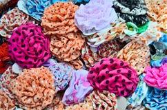 Variété d'accessoires colorés de cheveu Photo stock