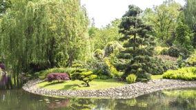 Variété d'arbres dans un jardin au-dessus d'un étang immobile Photo libre de droits