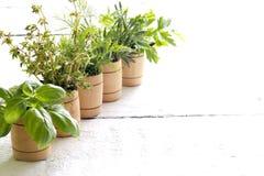 Variété d'herbes fraîches sur les conseils blancs Images stock