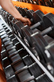 Variété de barbells dans le club de sport Photo stock