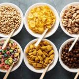 Variété de céréales froides dans des cuvettes blanches avec des cuillères photographie stock