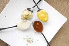 Variété de condiments Images stock