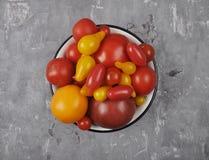Variété de cultivars de tomate dans la cuvette d'émail sur le béton Photos libres de droits