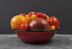Variété de cultivars de tomate dans la cuvette d'émail sur le béton Images stock