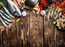 variété de fruits de mer de crevette, de mollusques et crustacés et de toute autre espèce marine Photographie stock