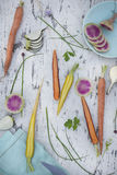 Variété de légumes crus de ressort Image libre de droits