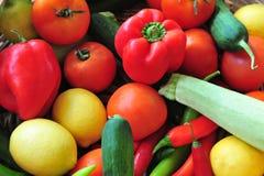 Variété de légumes frais Photos stock