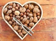 Variété de noix Photo stock