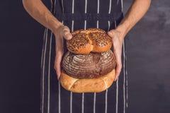 Variété de pains fraîchement cuits au four dans des mains de boulangers d'un jeune hippie images stock