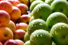Variété de pommes organiques Images libres de droits