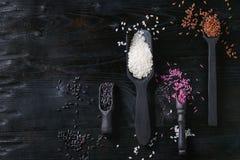 Variété de riz coloré Image stock
