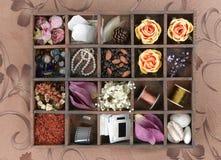 Variété de substances dans le cadre de décoration Image stock