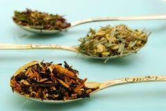 Variété de thé de fines herbes Image stock