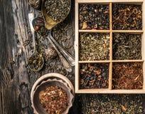 Variété des thés, mélanges dans le plat de cuivre, topview Photo stock