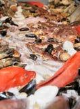 Variété grande de poissons et de fruits de mer Photo stock