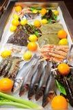 Variété grande de poissons et de fruits de mer Photographie stock libre de droits