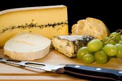 Variété intense de fromage photo libre de droits