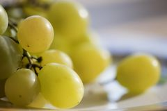 White table grapes. Variétés Italia of white table grapes royalty free stock image
