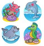 Vari animali dell'acqua e pesci 1 Immagine Stock
