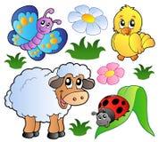 Vari animali felici della sorgente Immagini Stock