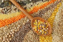 Vari cereali e Fotografie Stock