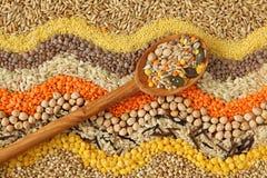 Vari cereali e Fotografie Stock Libere da Diritti