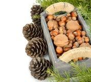 Vari dadi in una scatola di legno Fotografie Stock